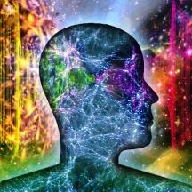 The Global Mind